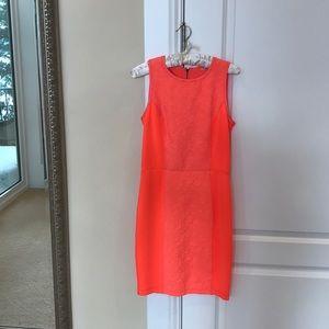 Women/Dress